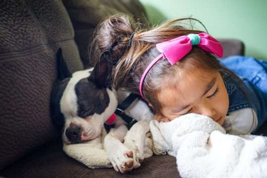 All About Pet Allergies in Children
